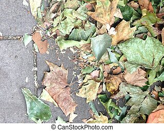 Autumn leaves on stone background