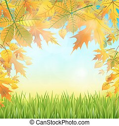 autumn leaves on the abstract background of the nature.
