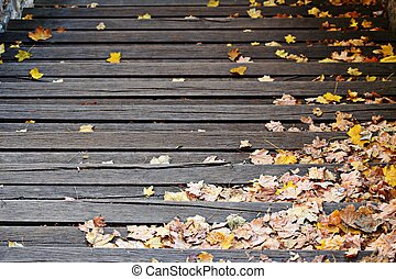 Autumn leaves on the stairs - Autumn leaves on the wooden...