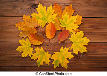 Autumn leaves on the wooden background.
