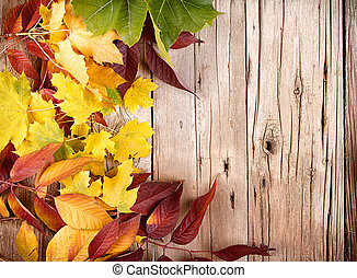 Autumn leaves on wooden plank