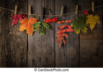 Autumn Leaves over a Natural Dark Wooden background