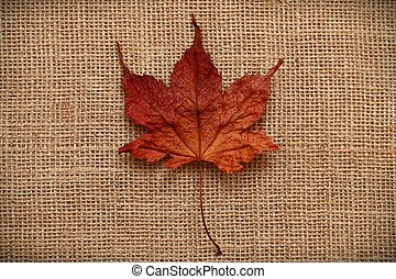 Autumn Leaves over jute background