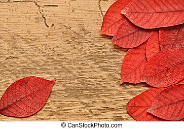 Autumn leaves over wooden background.