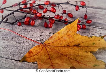 Autumn Leaves over wooden backgroun