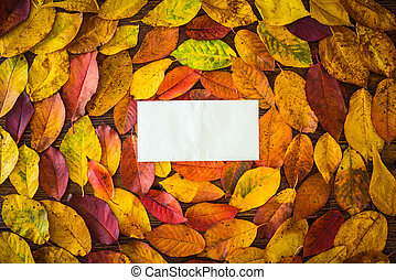Autumn leaves, paper sheet