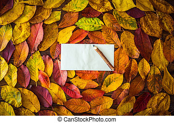 Autumn leaves, paper sheet, pencil