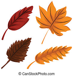 autumn leaves set illustration