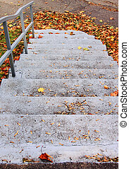 autumn leaves stairs - Autumn leaves and outdoor stairs.