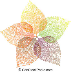 autumn leaves, vector - colorful autumn leaves, vector