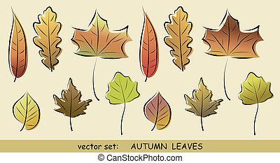 Autumn leaves vector set