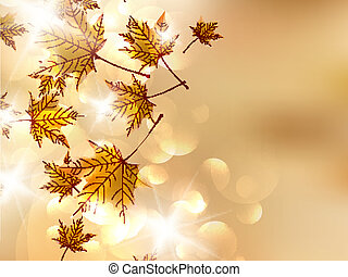 Autumn leaves, very shallow focus.