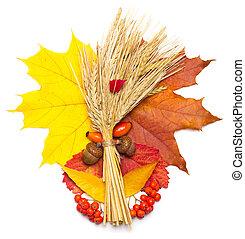 autumn leaves, wheat and acorn, rowan, briar isolated on ...