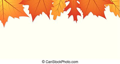 autumn leaves white background with copy space