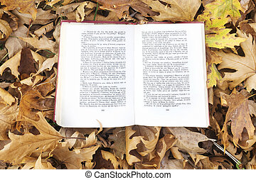 Autumn leaves with book.