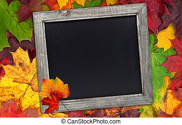 Autumn leaves with chalkboard
