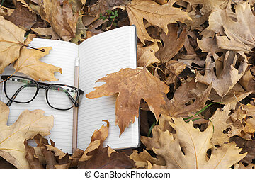 Autumn leaves with notebook and glasses.