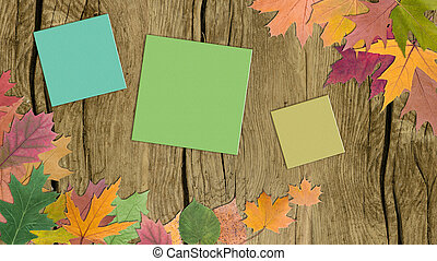 autumn leaves with paper