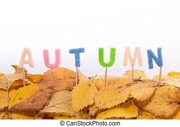 autumn letters