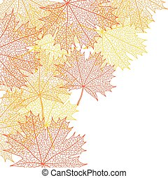 Autumn macro leaf of maple. Vector bacground