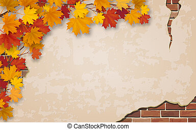 Autumn maple branch on old wall background.