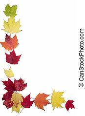 Autumn Maple Leaf Frame - a border made of autumn colored...