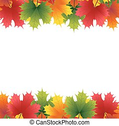 Autumn maple leaf on a white background