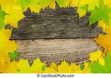 Autumn maple leafs on old boards