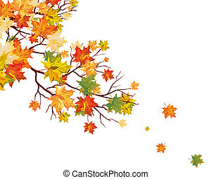 Autumn maple leaves background. Vector illustration.