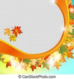 Autumn maple