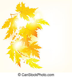 Autumn maple leaves background with space for text.