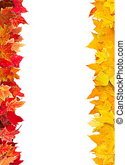 Autumn maple leaves frame