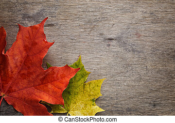 autumn maple leaves on wood surface, horizontal