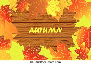 Autumnal leaf of maple - Autumn - maple leaves - vector...