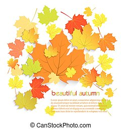 Autumn maple leaves with place for text isolated on white background. Vector illustration