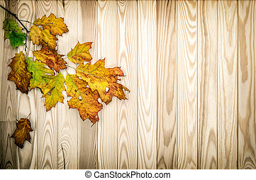 Autumn maple leaves wooden background vintage style