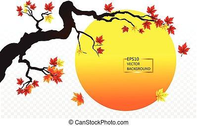 Autumn maple tree and sunset isolated on transparent. vector illustration