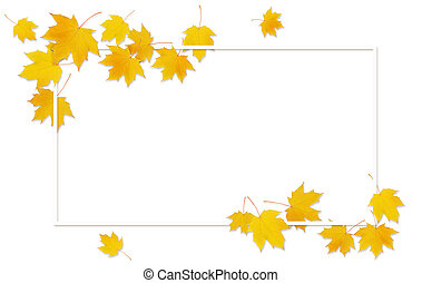 Autumn maple twig with yellow leaves and a frame on white background. Flat lay. Top view.