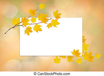 Autumn maple twig with yellow leaves and a white card on soft background
