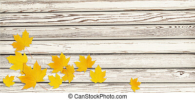 Autumn maple twig with yellow leaves in a corner arrangement on white wooden background. Flat lay. Top view.