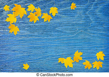 Autumn maple twig with yellow leaves on blue wooden background. Flat lay. Top view.