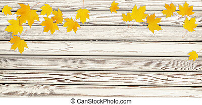 Autumn maple twig with yellow leaves on white wooden background. Flat lay. Top view.