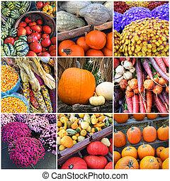 Autumn market collage