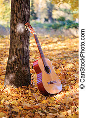 Autumn melody - Beautiful guitar standing in the sunlight ...
