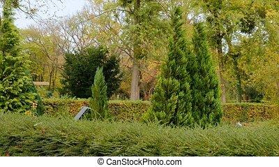 Autumn memorial park in fall season - Beautiful autumn...