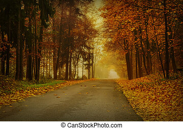 Autumn mist at the end of the road - Lithuanian landscape ...