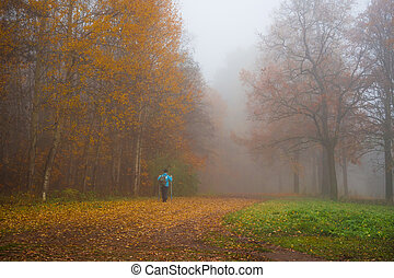 Autumn misty landscape with a man in the Park.