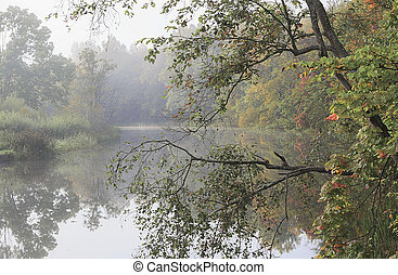 Autumn morning by the lake