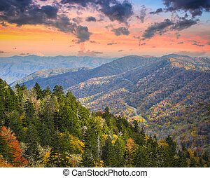 Smoky Mountains - Autumn morning in the Smoky Mountains...