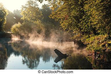 Autumn morning lake